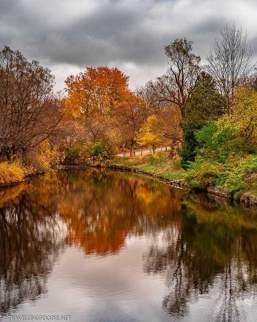 Avon River fall reflections at TJ Dolan Natural Area in Stratford, Ontario
