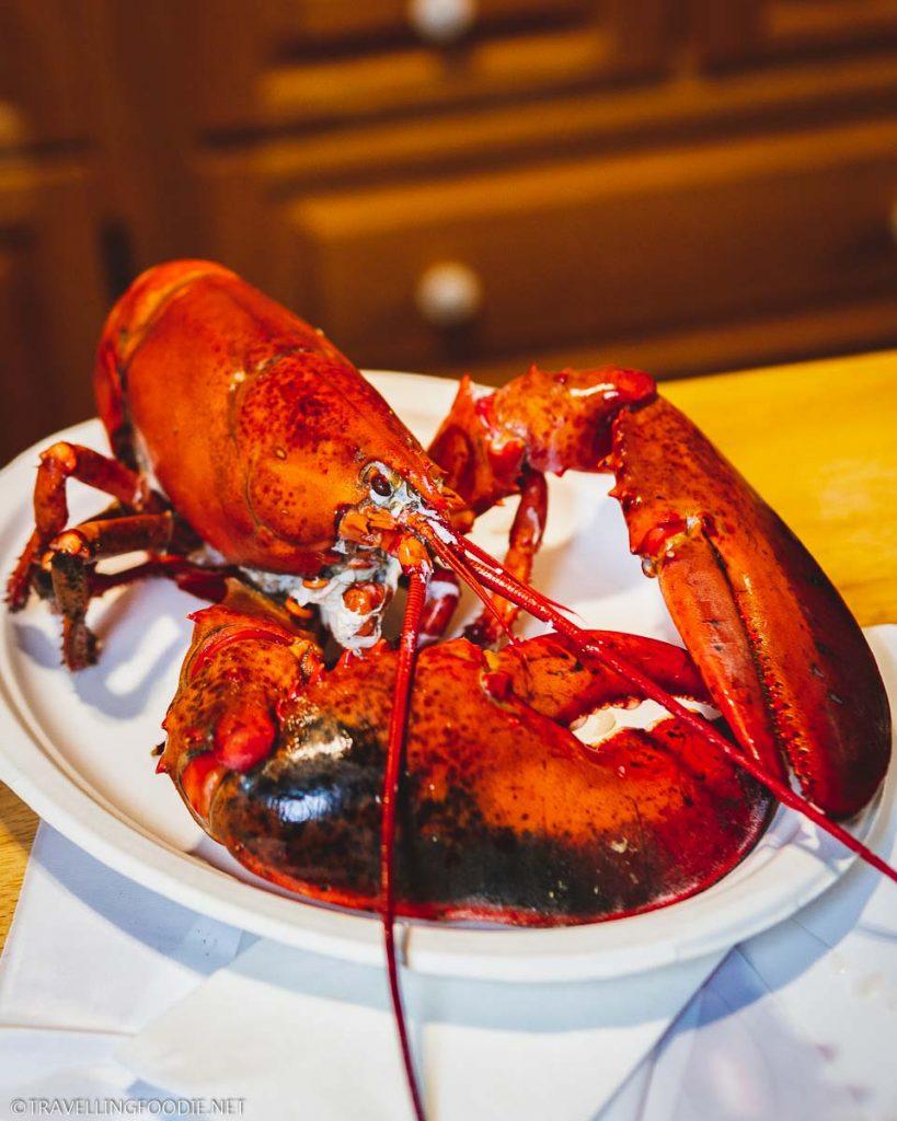 Steamed Lobster at Breakwater Inn in Peggy's Cove, Nova Scotia