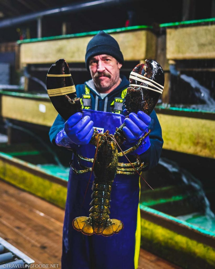 Man holding lobster at Ryer's Lobster Pound in Indian Harbour, Nova Scotia