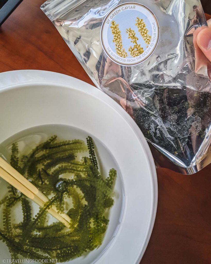 Fresh Sea Grapes and Submerged Umibudo Seaweed