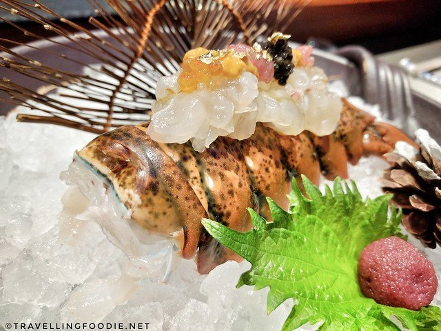 Live Lobster with sea urchin